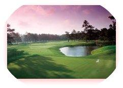 scenic golf course image